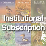 BB_Subscription-Institutional