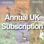 BB_Subscription-UKsub