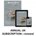 UK renewal