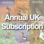 BB_Subscription-UKsub