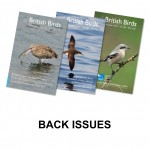 Back issues a